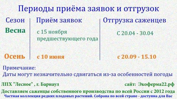 Периоды отгрузок саженцев ЛПХ Лесное Барнаул