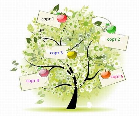 Семейное(многосортовое) дерево