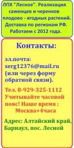 Контакты ЛПХ Лесное, Барнаул